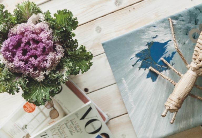 flores y revistas